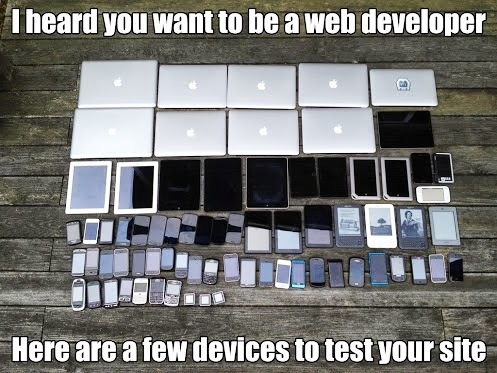 You want to be a web developer?